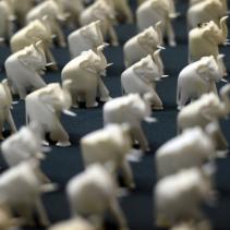 ivory-elephant-charms