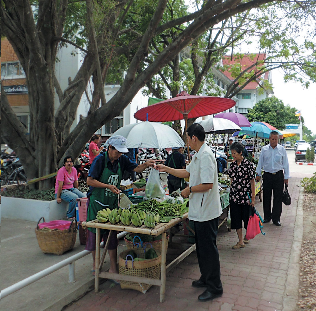 Chiang-Mai-City-Hall-organic-market