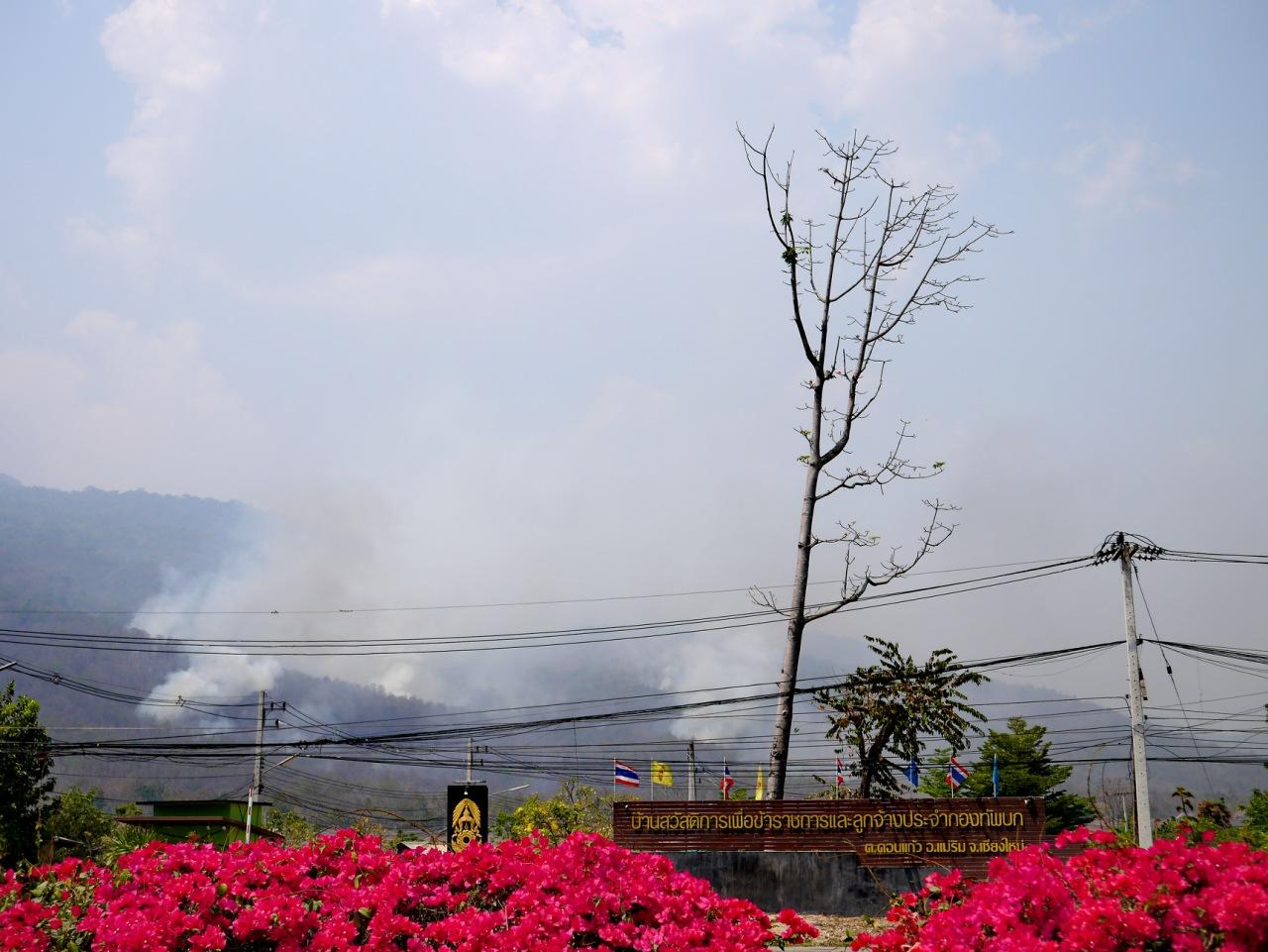 Fire At Doi Suthep – Pui National Park - TeakDoor.com - The Thailand Forum