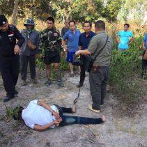dam burmese robber
