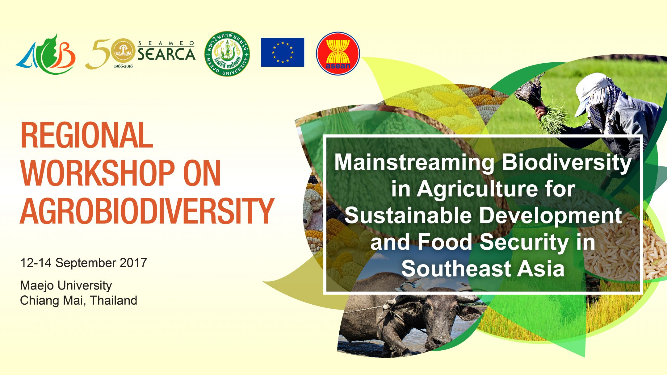 agricultural sustainability and biodiversity essay Free essays on sustainable agriculture get help with your writing 1 through 30.