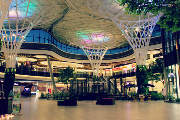mall mania You just bought a mall center and now you are going to fill it with the best stores to attract as many customers as possible use the money you earn to upgrade your stores and modify the environment so your mall attracts more clients, who will increase your revenues.