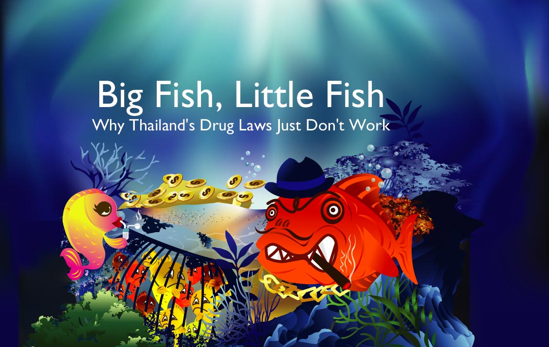 Chiang mai citylife big fish little fish why thailand for Big fish little fish